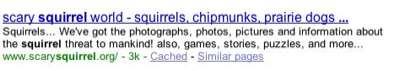 Google-Squirrel
