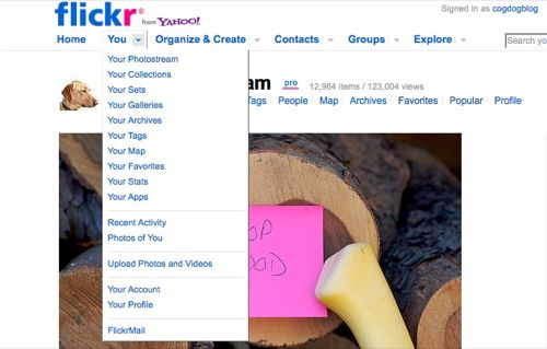 flickr-you