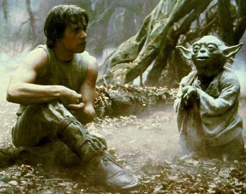 Yoda_Luke