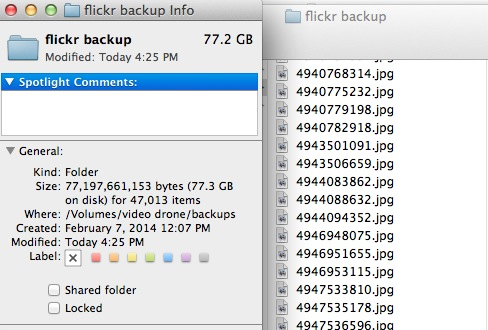 flickr backup dir