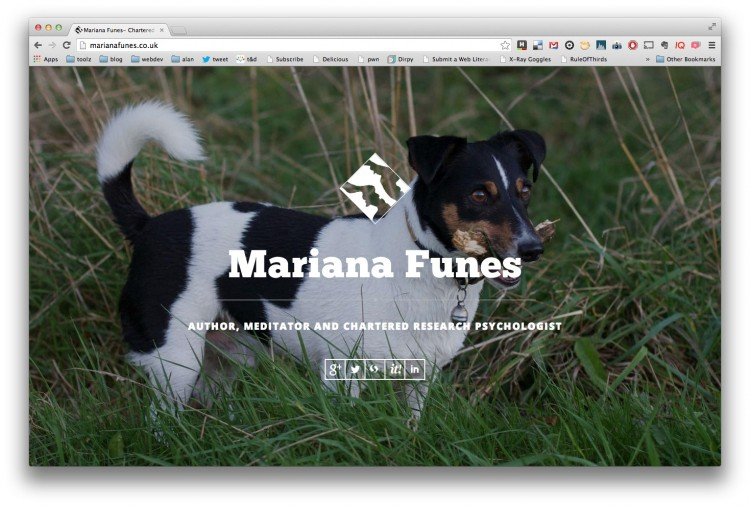 Making of Mariana's New Landing Page
