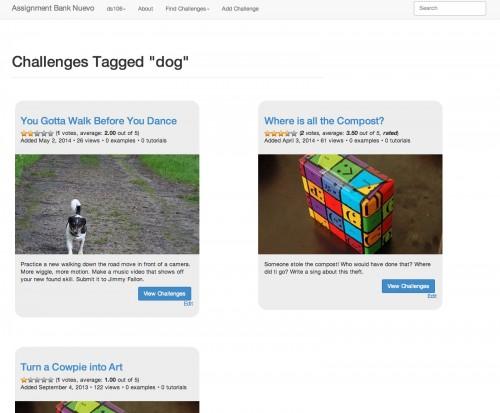 tagged-dog