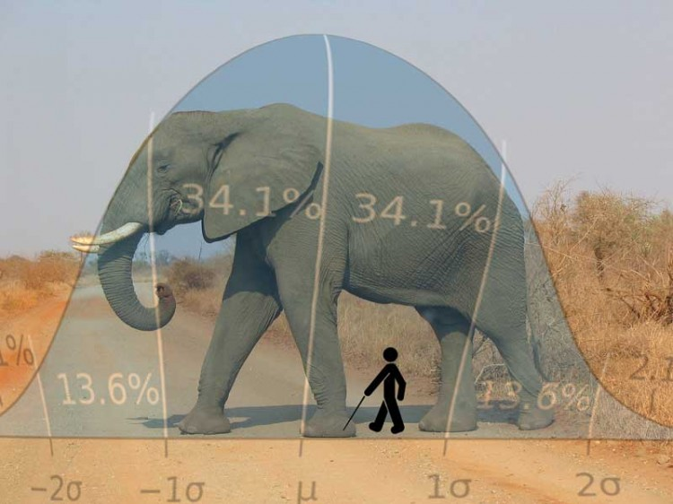 The Good, The Bad, and The Elephant Shaped Bell Curve Farm Bias