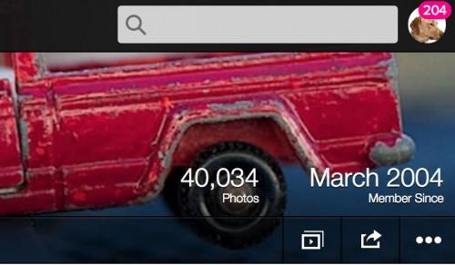 flickr numbers