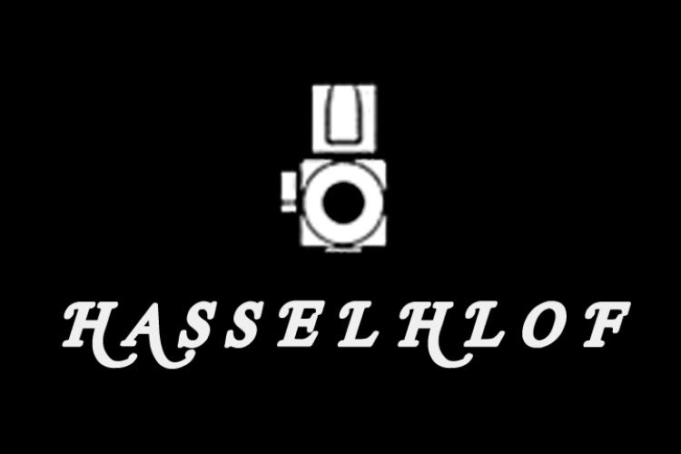 The Hasselhlof Video