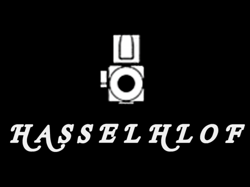 The Hasselhlof Video
