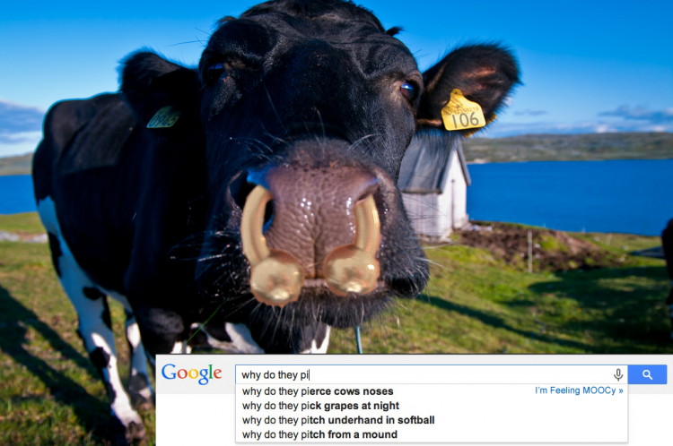 When Google Completes Me… I'm Feeling MOOCy