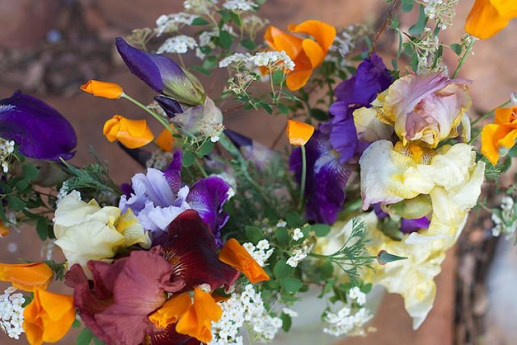 Flowers for Nancy