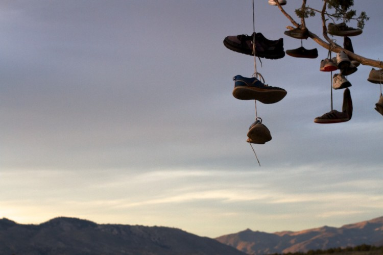 Shoes on a Tree at Sunset