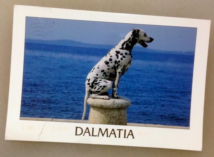 Dalmatia – 22