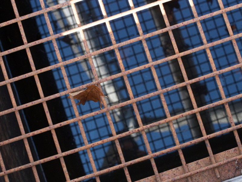 [Almost] A Week Gridding and Gesturing