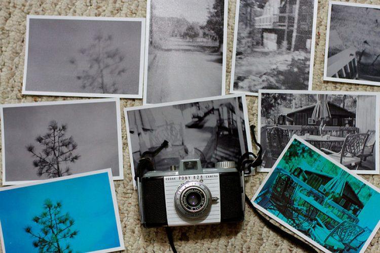 Image / Photo
