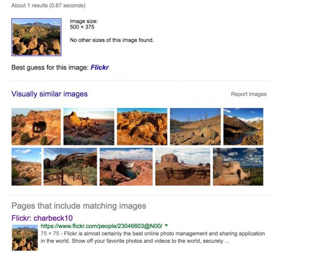 image-search-results
