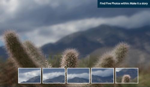 five photos