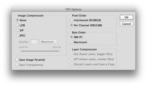 tiff options export