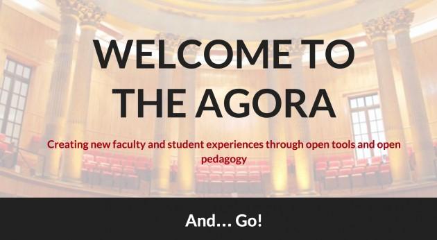Open Ed 2015 UDG Agora presentation