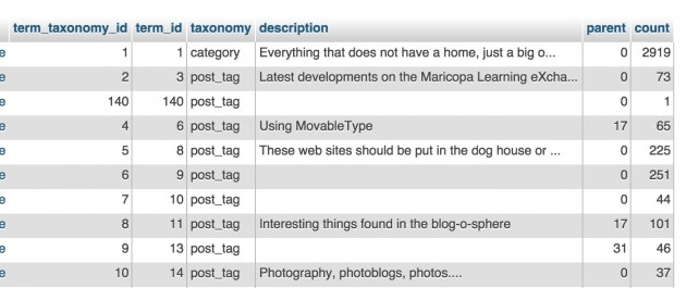 wp_term_taxonomy table for this blog