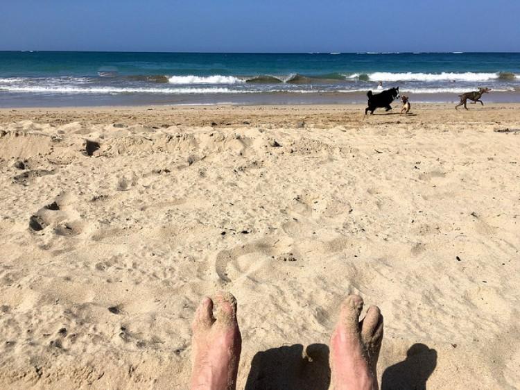 Overworked in San Juan?