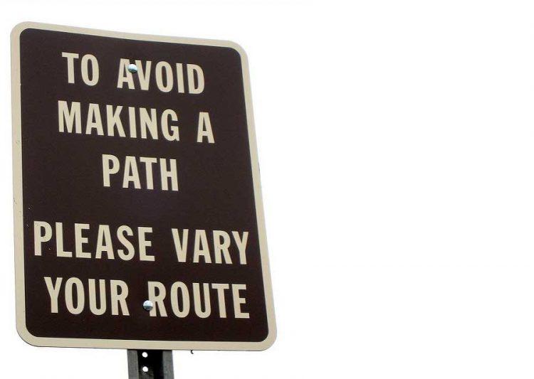 """Bushwhacking Through """"We Make the Road by Walking"""""""