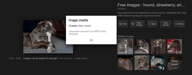 """overlay of Umage Credits from search results showing """"Creator: Alan Levine"""""""