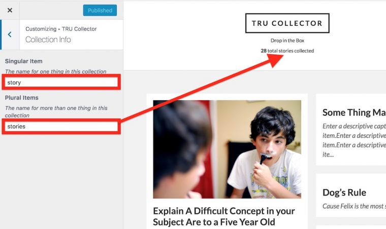 """WordPress Customizer showing section to enter single and pliral name for the things in a collection, and an arrow showing how """"stories"""" entered for plural is used."""