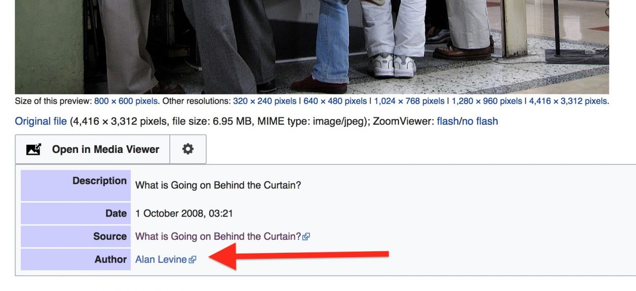 The page on Wikipedia for the image found, under author is the name 'Alan Levine' (red arrow points to it)