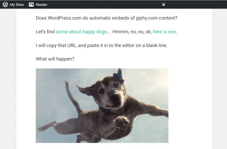 When published, we see the gif embedded. Funny looking dog flying in the air.